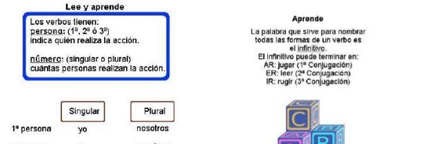 Aprende: El verbo: Conjugaciones, género y número.